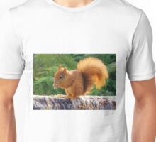 Red Squirrel with Nuts Unisex T-Shirt