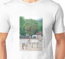 Lipizzaner horses Unisex T-Shirt