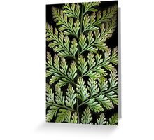 Leaf Abstract Greeting Card
