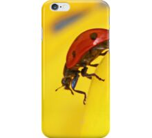What are you looking at ?? iPhone Case/Skin