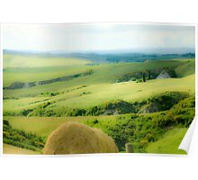 Rolling green hills with trees Photographed in Tuscany, Italy Poster