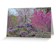 PurpleSpring Greeting Card
