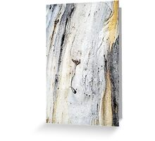 Down to Earth - Textured Bark Greeting Card