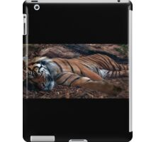Sleeping tiger iPad Case/Skin