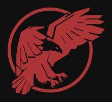 Taka The Hawk by Jay Williams