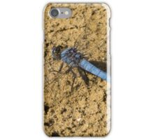 77 - libellula iPhone Case/Skin