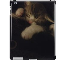 Kitty iPad Case/Skin