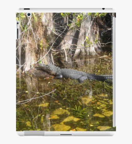 Everglades Alligator iPad Case/Skin