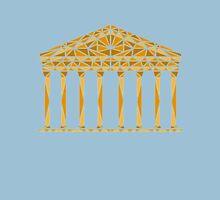 Geometric Pantheon in colour Unisex T-Shirt