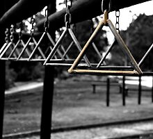 Monkey Bars In Cuenca by Al Bourassa