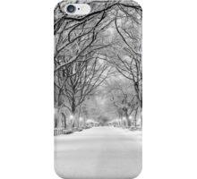 Cental Park New York, NY  winter scene iPhone Case/Skin