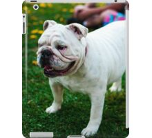 Cute Bulldog iPad Case/Skin