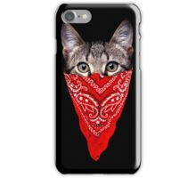 Gangster Cat iPhone Case/Skin