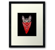 Gangster Cat Framed Print