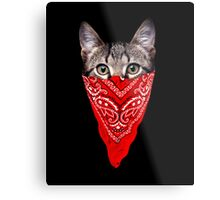 Gangster Cat Metal Print