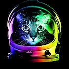 Astronaut Cat by clingcling