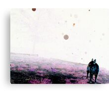 Color Negative Of Dallas And Orbs Canvas Print