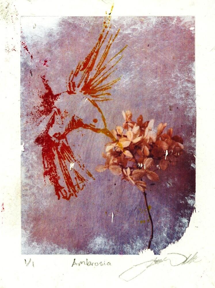 Ambrosia by Jayne Whitaker