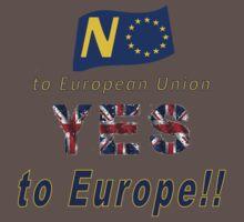 NO to European Union, YES to EUROPE! Baby Tee
