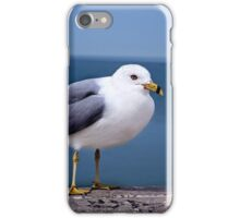 Fred the Seagull  iPhone Case/Skin