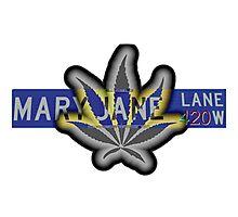Mary Jane Lane - 420 Photographic Print