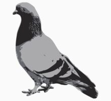 Pigeon by trev4000