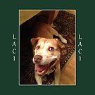 Lacy (2) by Lydia Marano