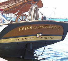 Pride of Baltimore II (Stern) by Francis LaLonde