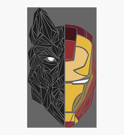Game Of Thrones / Iron Man: Stark Family Photographic Print