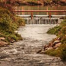 71416 bridge o water by pcfyi