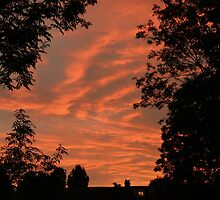 Golden Sky by Peter Barrett
