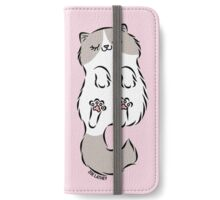 Fluffy Cat Sleeping iPhone Wallet/Case/Skin