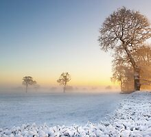 Winter Sunrise by JLHphoto