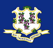 Connecticut State Flag  by Carolina Swagger