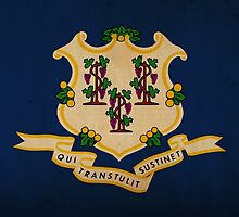 Connecticut State Flag VINTAGE by Carolina Swagger