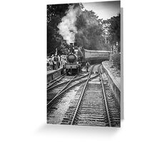 All Aboard!! Greeting Card