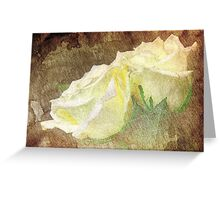 A painting of a two white of Roses Greeting Card
