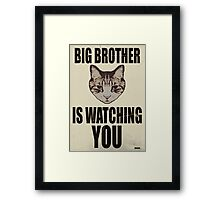 Orwellian Cat is Watching You Framed Print