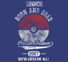 Born and Bred (Sinnoh, North America, 2007) by Duckster18
