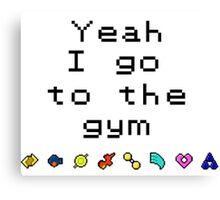 Pokemon gym- Hoenn Canvas Print