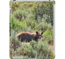 Bear Spotting iPad Case/Skin