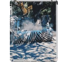 Cooling down iPad Case/Skin
