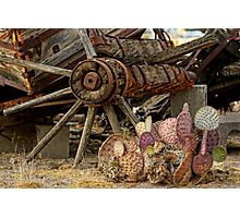 Nopal and Wagon Wheel Photographic Print
