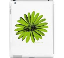 Daisy Bee Green iPad Case/Skin