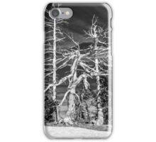 Crater Lake Sentinels Monochrome iPhone Case/Skin