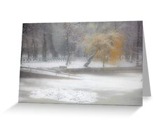 Park During Heavy Snowfall In Winter In Bucharest, Romania Greeting Card