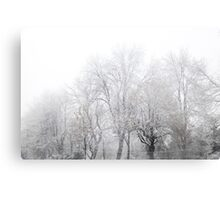Park During Heavy Snowfall In Winter In Bucharest, Romania Metal Print