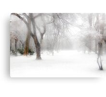 Park During Heavy Snowfall In Winter In Bucharest, Romania Canvas Print