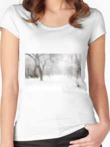 Park During Heavy Snowfall In Winter In Bucharest, Romania Women's Fitted Scoop T-Shirt