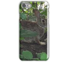 Bunny on a Log iPhone Case/Skin